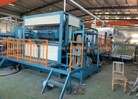 High Speed Paper Egg Tray Production Line For Packaging Eggs / Fruit