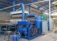 China Poultry Farm Paper Egg Box Machine With Electricity Control System factory