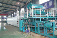 China Egg Tray Machine , Rotary Type Pulp Molding Machine factory