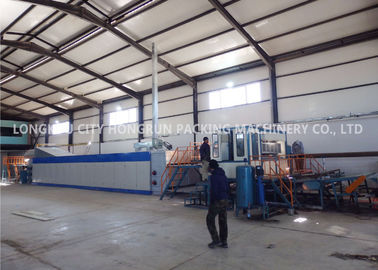 China Diesel Fuel Egg Tray Production Line Pulp Moulding Machine 50HZ factory